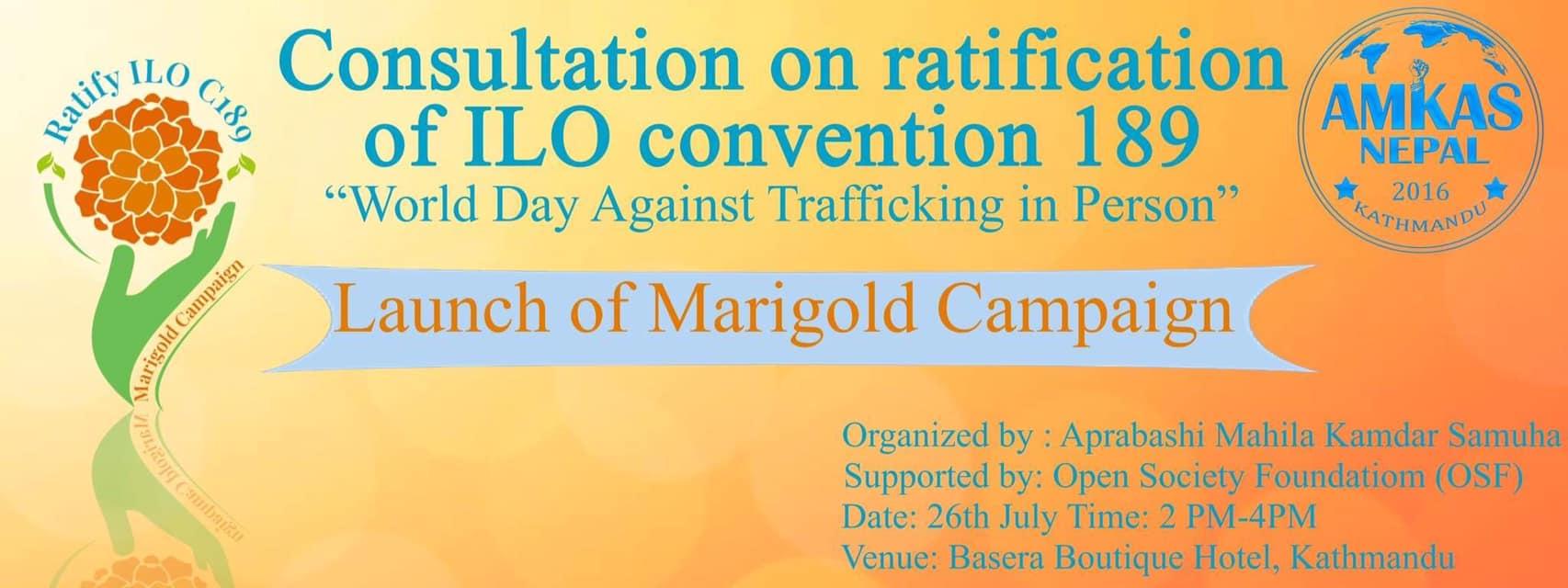 Marigold Campaign